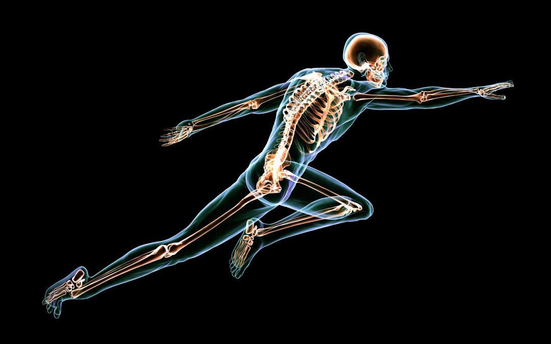 10 förbluffande fakta om kroppen