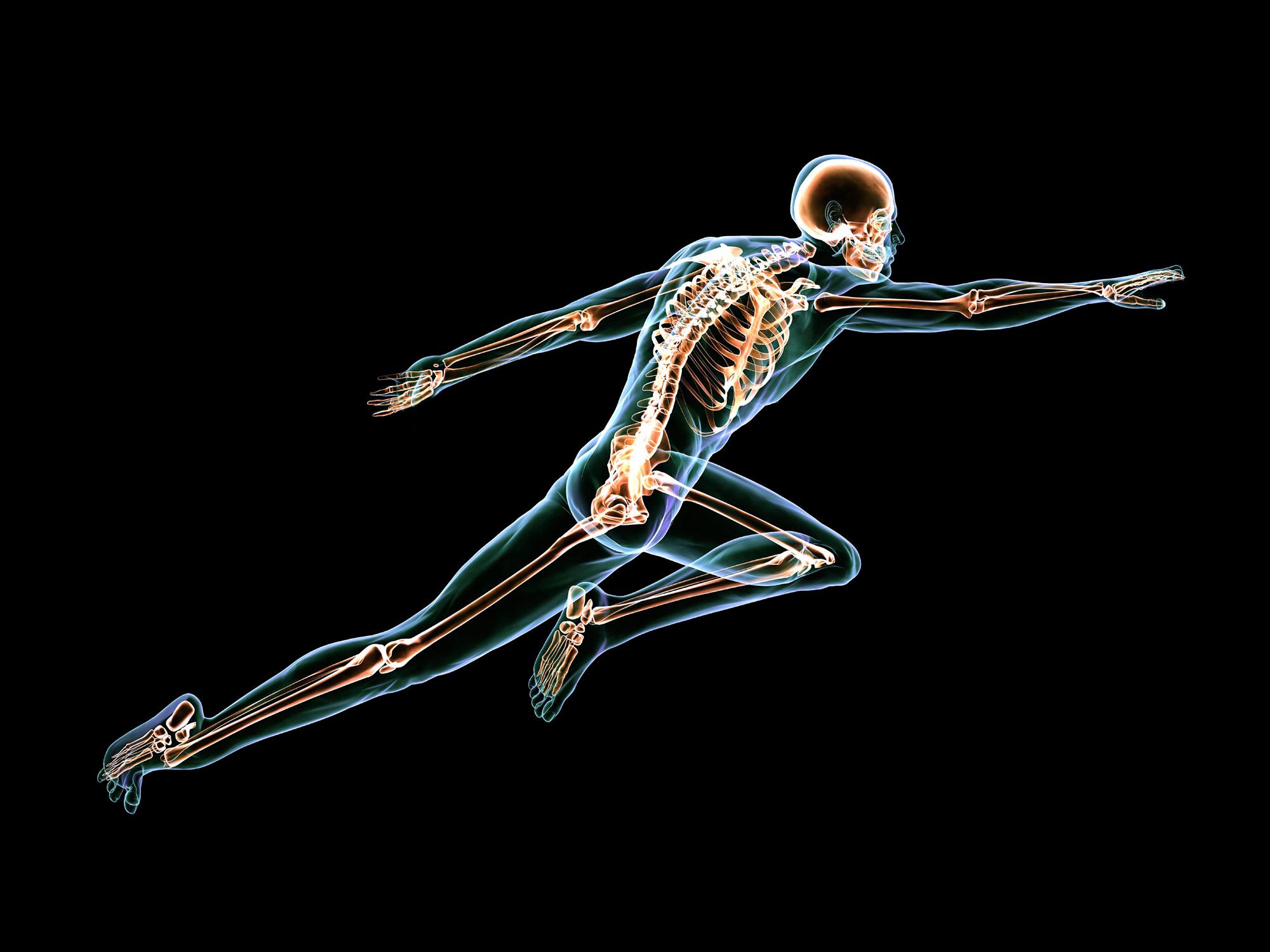 quiz om kroppen