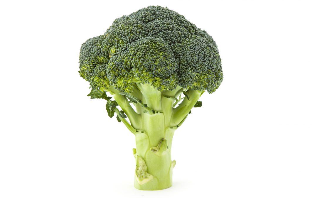 Broccoli – Rik på folsyra och zin