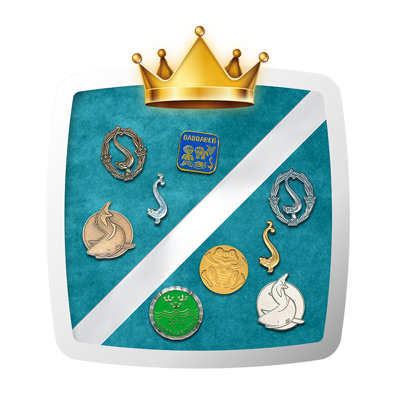 simkampen-shield