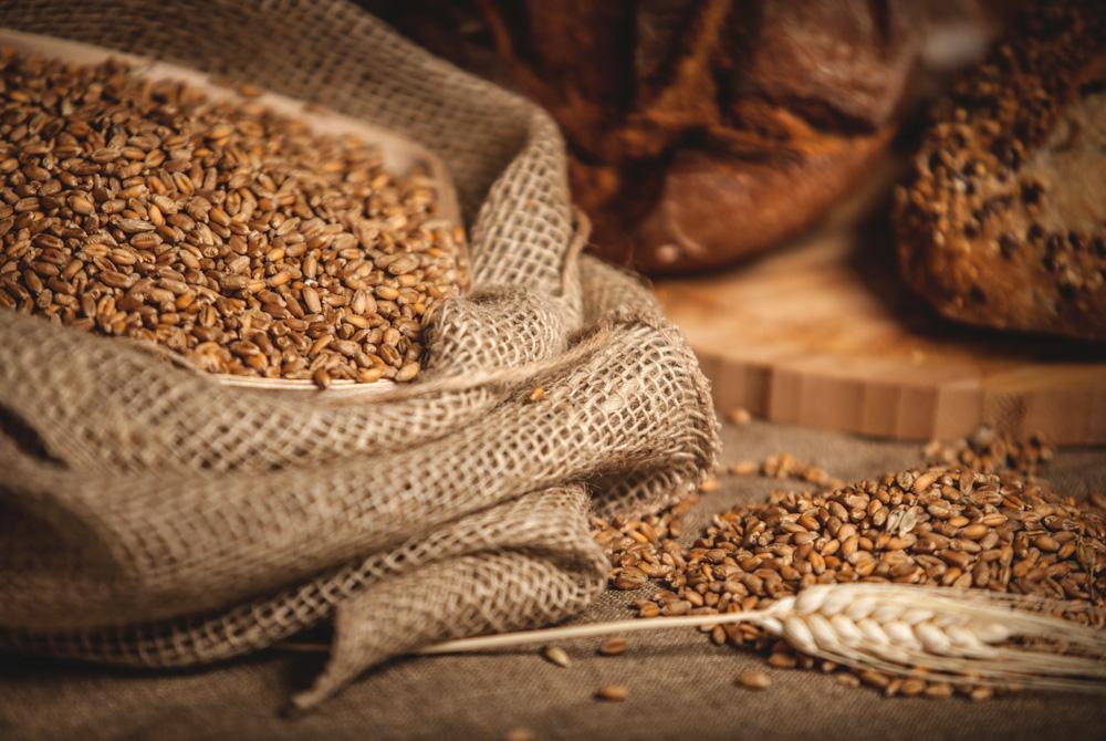 Nyttigt bröd